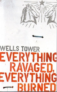 Everything Ravaged, Everything Burned: a collection of short stories by Wells Tower
